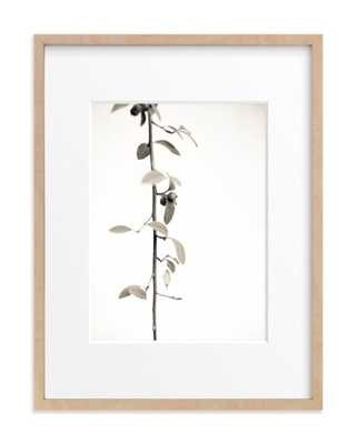 Berry Branch Limited Edition Art - Minted