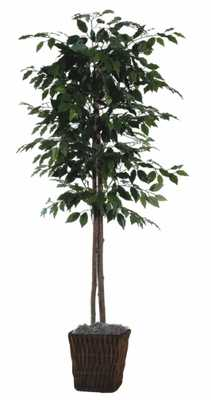 Artificial Ficus Tree in Planter - Wayfair