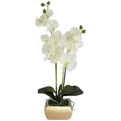 "White Orchid 22"" High Faux Flowers in Gold Ceramic Pot - Lamps Plus"