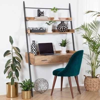 Karamo Solid Wood Ladder Desk - AllModern