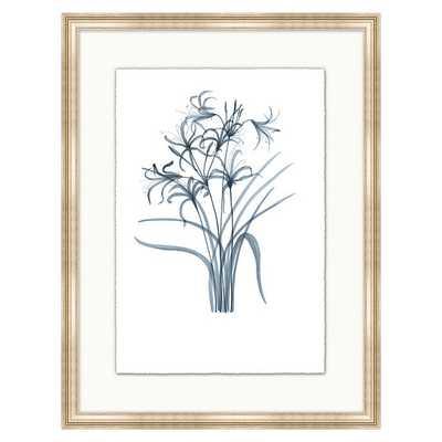 Fragile Blossoms Art - Cornflower Print VII - Ballard Designs