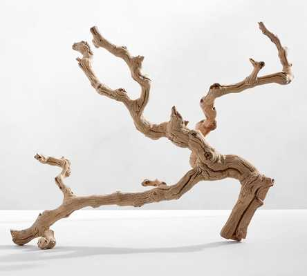Dried Grapewood Branch - Pottery Barn
