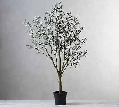 Faux Potted Olive Tree - Pottery Barn