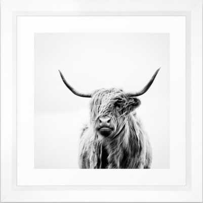 Portrait Of A Highland Cow: Mini 12x12 - Society6