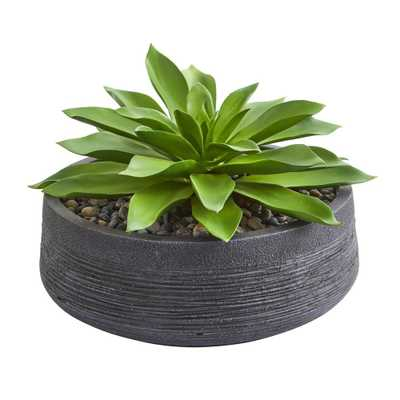 Large Succulent Artificial Plant in Decorative Bowl - Fiddle + Bloom