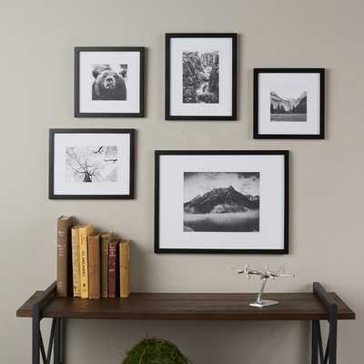 Wayfair Basics 5 Piece Picture Frame Set - Wayfair