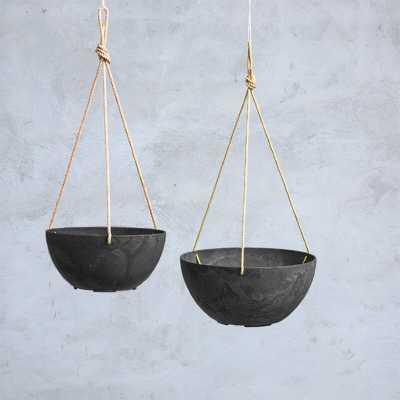 Pollyanna Self-Watering Resin Hanging Planter - Wayfair