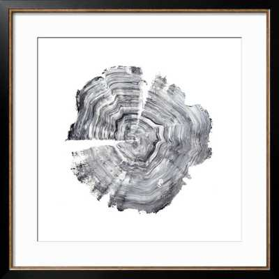 Tree Ring Abstract IV by Ethan Harper - art.com