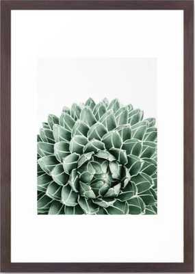 Succulent splendour Framed Art Print - Society6