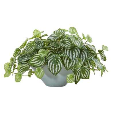 """19"""" Watermelon Peperomia Artificial Plant in Vase - Fiddle + Bloom"""