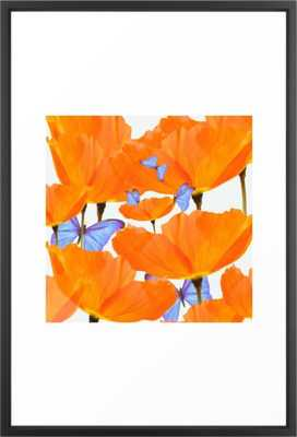 Poppies And Butterflies White Background #decor #society6 #buyart Framed Art Print - Society6