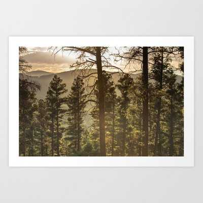 Mountain Forest New Mexico - Nature Photography Art Print - Society6