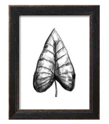 Palm Leaf Illustration - art.com