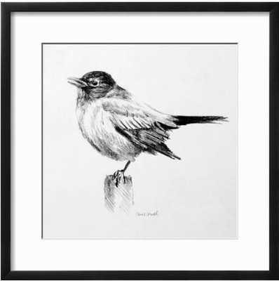 Bird Drawing III By Lanie Loreth - art.com