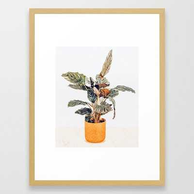 Botany    #illustration #painting #nature - Conservation Natural - Society6