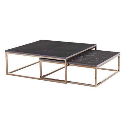 Juri 2 Piece Coffee Table Set - Wayfair