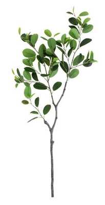 FAUX ITALIAN FICUS BRANCH (single) - McGee & Co.