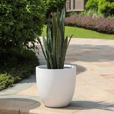 Adamell MgO Pot Planter - Birch Lane