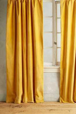 Matte Velvet Curtain - Gold - Anthropologie