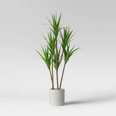 """65"""" Dracaena Plant in Pot - Project 62™ - Target"""
