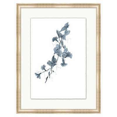 Fragile Blossoms Art - Cornflower Print X - Ballard Designs