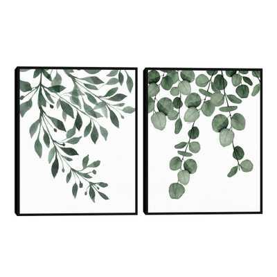 Botanical Sage I & II By Gigi Conrad Framed Wall Art 2 Piece - World Market/Cost Plus