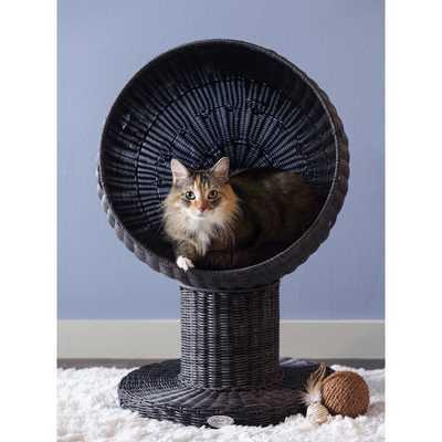 Dominic Kitty Ball Hooded Cat Bed - Wayfair