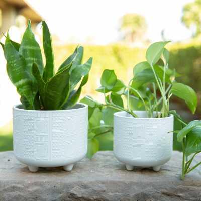 Hiero Ceramic Pot Planter - Wayfair