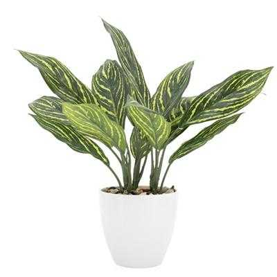 "Villa 5.5"" Diameter Faux Potted 14"" Plant in Stripe Calathea design by Torre & Tagus - Burke Decor"