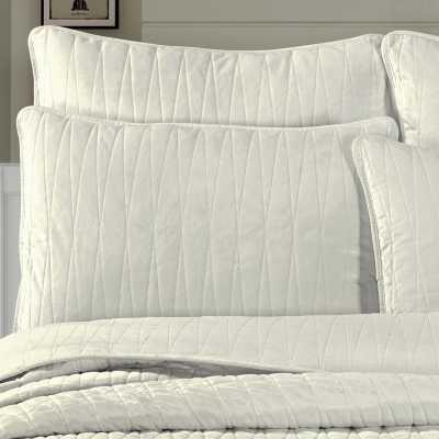 Premium Velvet Pillow Sham - Wayfair
