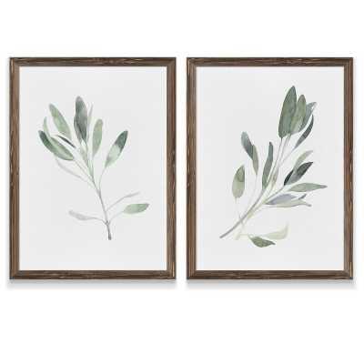 "'Simple Sage I' by Vincent Van Gogh - 2 Piece Picture Frame Painting Set (Set of 2) / Espresso Framed Set / 18"" W x 24""H - Wayfair"