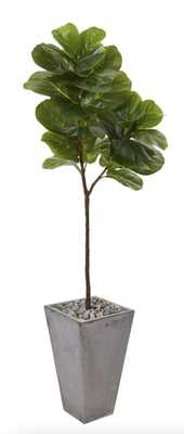 "70"" Fiddle leaf artifical tree in cement planter - Fiddle + Bloom"