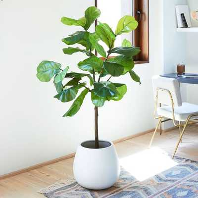 Faux Fiddle Leaf Fig Plant - West Elm