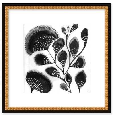 "African Botanicals - 16"" x 16"" - Artfully Walls"