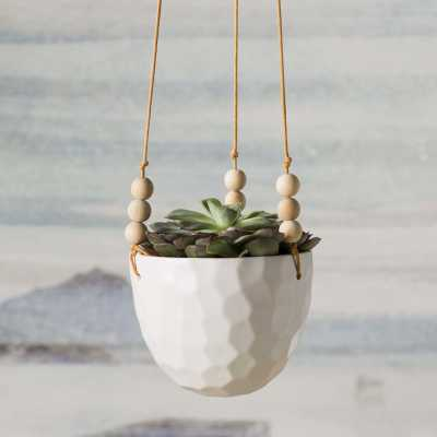 Mari Hanging Planter - Wayfair