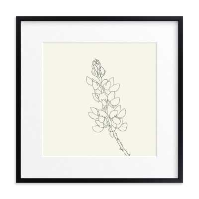 """Lupine - 24"""" x 24"""", Rich Black Wood Frame, Matted - Minted"""