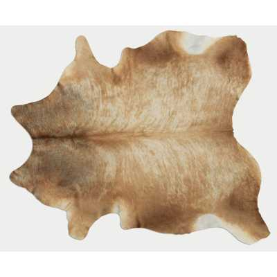 Lettie Hand-Woven Cowhide Tan Area Rug - Wayfair