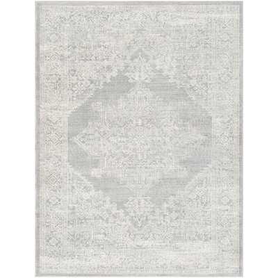 Mac Distressed Traditional Light Gray Area Rug - 9x12 - Wayfair