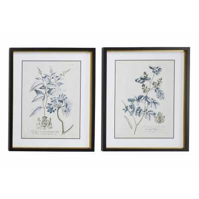 "Large Rectangular Blue Vintage Flower Illustrations Framed Wall Art   Set of 2: 20"" x 24"" Each - Wayfair"