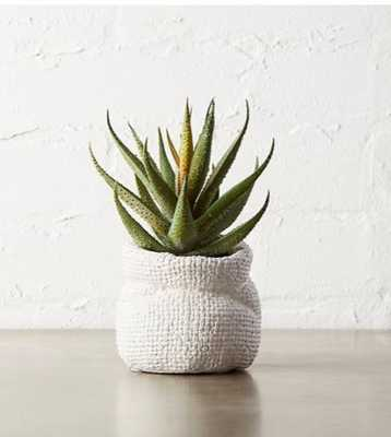 "POTTED FAUX ALOE PLANT 6"" - CB2"