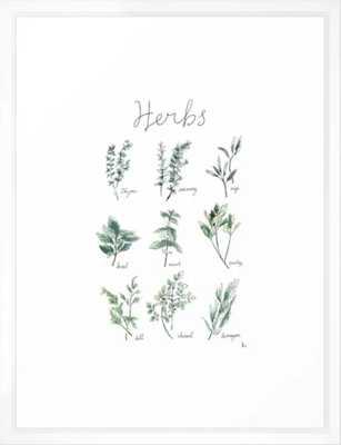 """Herbs Botanical Illustration Framed Art Print - 20x26"""" - vector white frame - Society6"""