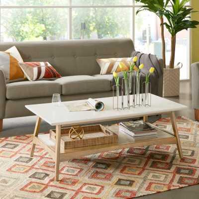 Arlo Coffee Table with Storage - Wayfair