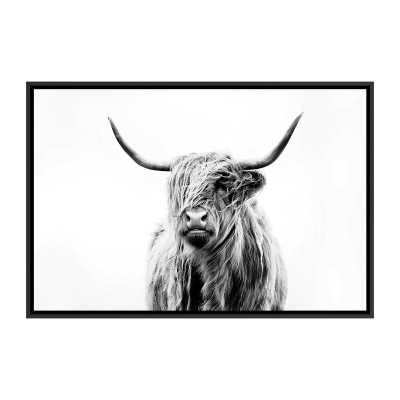'Portrait of a Highland Cow' by Dorit Fuhg - Painting Print - Wayfair
