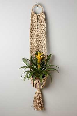 Macrame Hanging Planter - Anthropologie