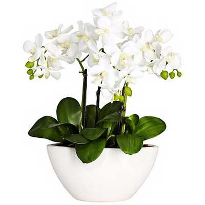 White Phalaenopsis Faux Floral Centerpiece in White Bowl - Lamps Plus