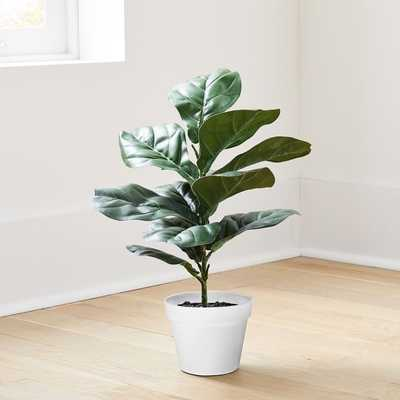 Faux Potted Fig Leaf, 2' - West Elm