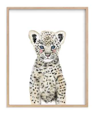 Baby Animal Leopard - 16 x 20 - Minted
