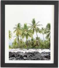 "Bree Madden Island Palms Black Framed Wall Art 11"" x 13"" - Wander Print Co."