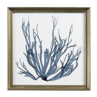 Ballard Designs Petite Blue Seaweed Art - Print 1 - Ballard Designs