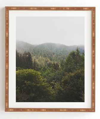 northern california redwood forest Framed Wall Art by catherine mcdonald 14 x16.5 - Wander Print Co.
